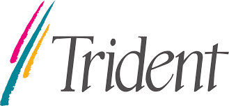 Trident Semiconductor
